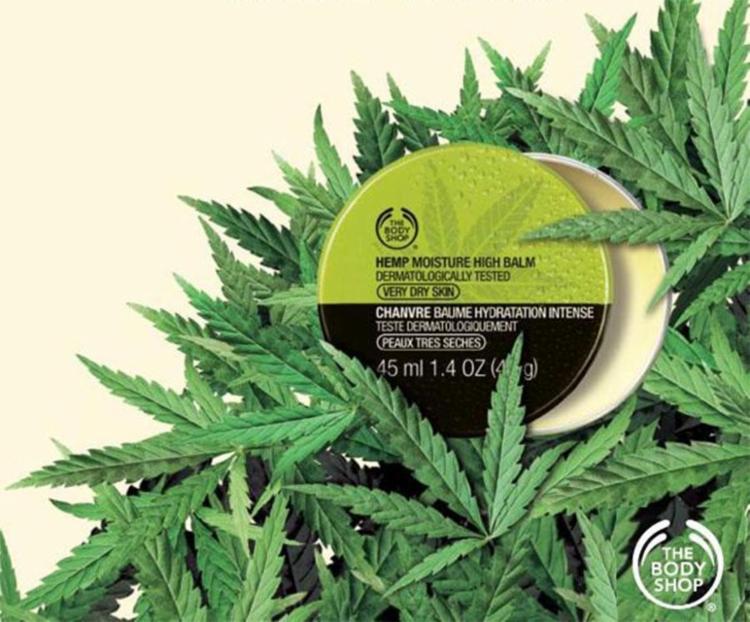 Coleção Hemp, da The Body Shop, usa óleo de sementes de Cannabis - Foto: Divulgação