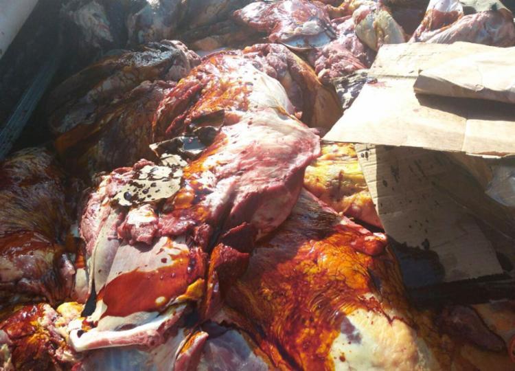 Foram recuperados carne de boi, carneiro, frango e animais silvestres - Foto: Divulgação   SSP-BA
