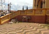 População denuncia uso de animais vivos em presépio ao ar livre | Foto: Reprodução | Facebook