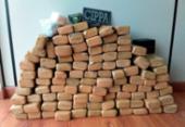 Cerca de 110 kg de maconha são achados dentro de apartamento em Ilhéus | Foto: Divulgação SSP