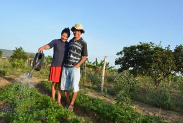 Serviços de ATER identificam as potencialidades da Agricultura Familiar