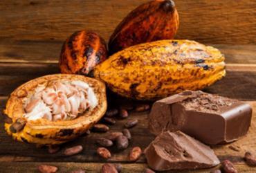 Ilhéus e Uruçuca vão ganhar Estrada do Chocolate