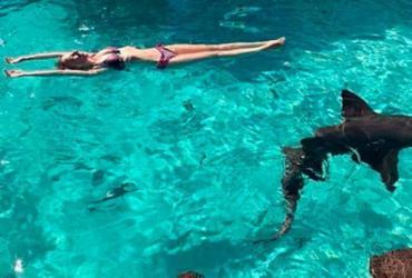 Marido grava ataque de tubarão à mulher em viagem de lua de mel
