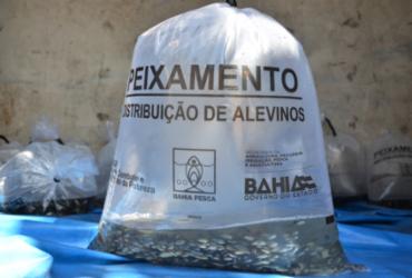 Trabalhadores de Maraú recebem filhotes de peixes e equipamentos de proteção
