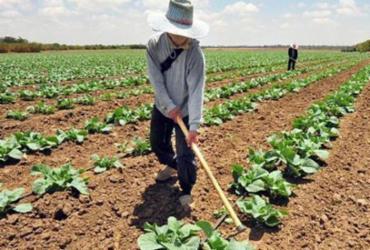 Agricultores podem ter desconto de até 95% em dívida com o Banco do Nordeste
