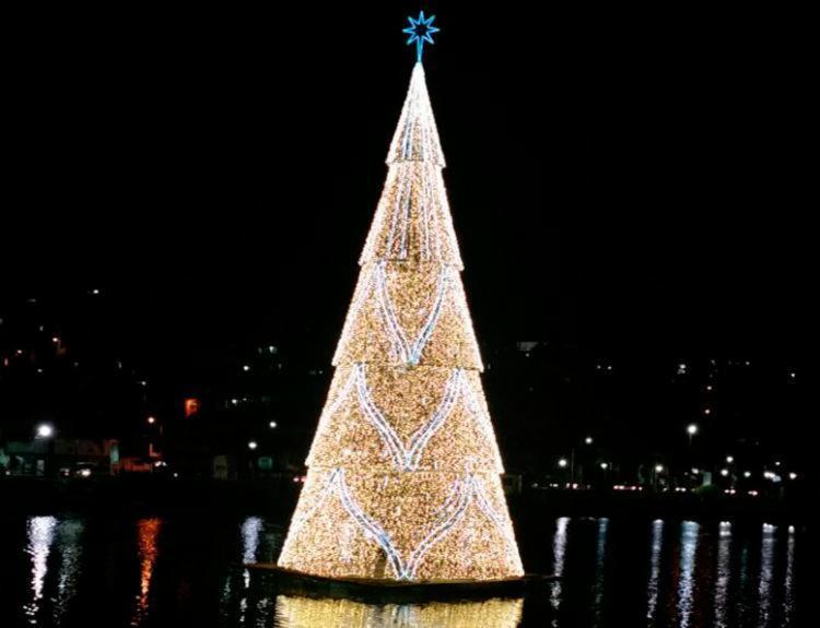 Árvore de Natal ilumina o Dique do Tororó, em Salvador - Foto: Thaís Seixas   Ag. A TARDE