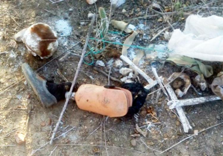 A ossada foi levada para perícia no DPT do município - Foto: Reprodução | Notícias de Santaluz