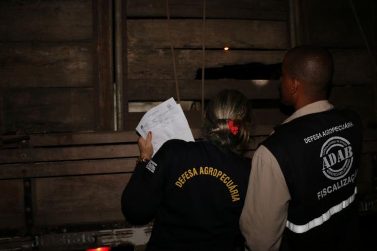 Por conta da reincidência valor da multa foi dobrado - Foto: Alberto Maraux   SSP