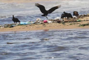 Cinco praias de Salvador concentram maiores níveis de poluição