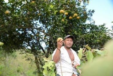 Prazo para inscrição no Cadastro Ambiental Rural é prorrogado