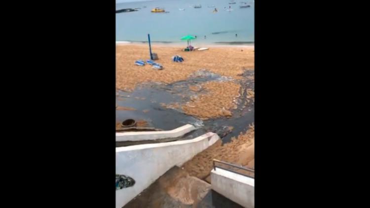 Derramamento seria provocado pela drenagem da água da chuva, com sujeira e esgotos ilegais - Foto: Reprodução   Internet