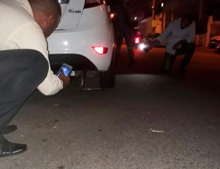A sucuri foi encontrada em frente à 16ª Delegacia Territorial - Foto: Divulgação | SSP-BA
