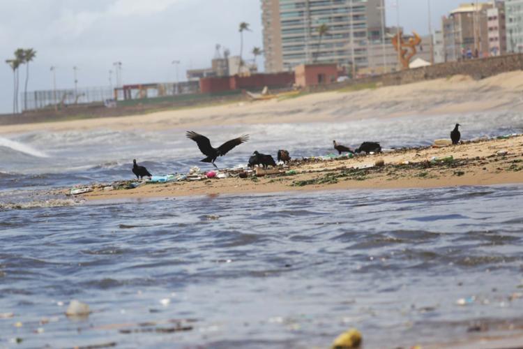 A praia sofre influência direta da poluição advinda dos rios Camarajibe e das Pedras - Foto: Alessandra Lori | Ag. A TARDE