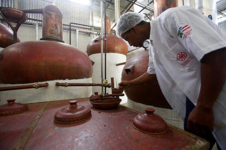 Produção da Cachaça Amada, em Emboacica, distrito de Dias D'Ávila - Foto: Adilton Venegeroles / Ag. A TARDE