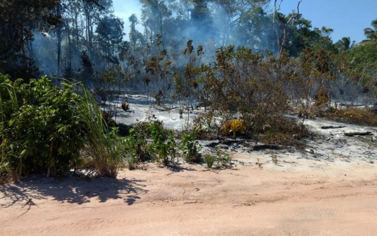 Devastação atingiu as margens da BR-030 - Foto: Divulgação | Secretaria de Meio Ambiente