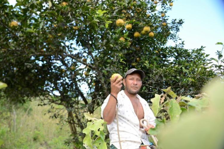 Os produtores rurais baianos terão até o dia 31 de maio para fazer a sua inscrição - Foto: Divulgação