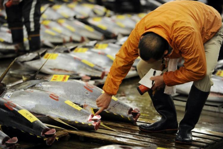 O comprador foi o dono de uma cadeia de restaurantes do país - Foto: Y. Tsuno | AFP