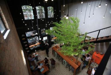 Café tem árvore no centro do salão e tomadas para notebook | Joá Souza