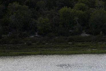 Dois corpos são encontrado próximos a Lagoa do Abaeté | Margarida Neide | Ag. A TARDE