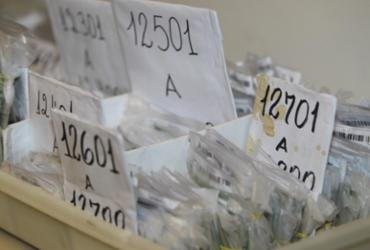 Foliões já podem recuperar documentos perdidos durante o Carnaval | Elói Corrêa | GovBA