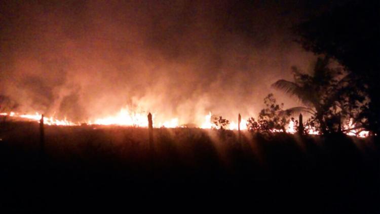 Polícia suspeita que o fogo tenha começado a partir da queima de lixo - Foto: Divulgação | PM