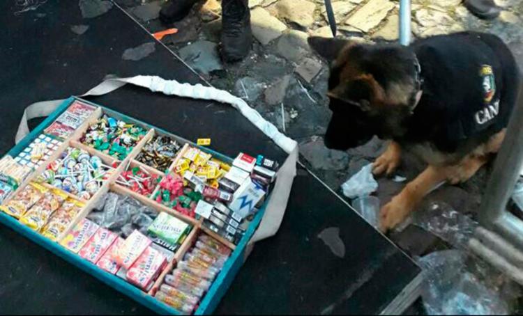 Animais pertencentes ao Canil da PM farejaram e localizaram os entorpecentes - Foto: Divulgação | SSP