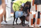 Feira de rua voltada para o mundo pet termina neste domingo | Foto: Adilton Venegeroles l Ag. A TARDE