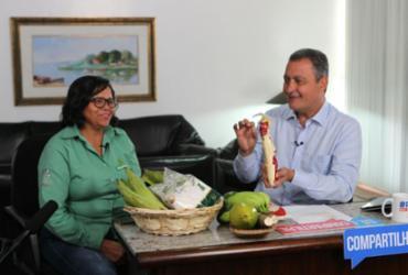 Cadeia produtiva da mandioca é destaque em programa do governador