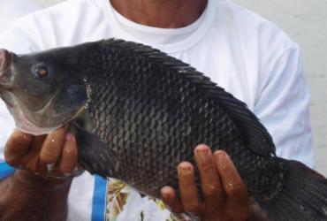 Pescadores e produtores de Paulo Afonso, Rodelas e Glória são beneficiados com ações da Bahia Pesca