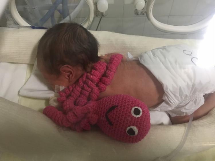 A prática consiste em fazer com que o bebê sinta calma e proteção ao ser abraçado pelo brinquedo - Foto: Divulgação