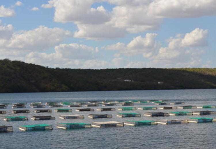 Os pescadores receberão bolsões travesseiros, rolos de corda e caixas plásticas para ostreicultura - Foto: Divulgação