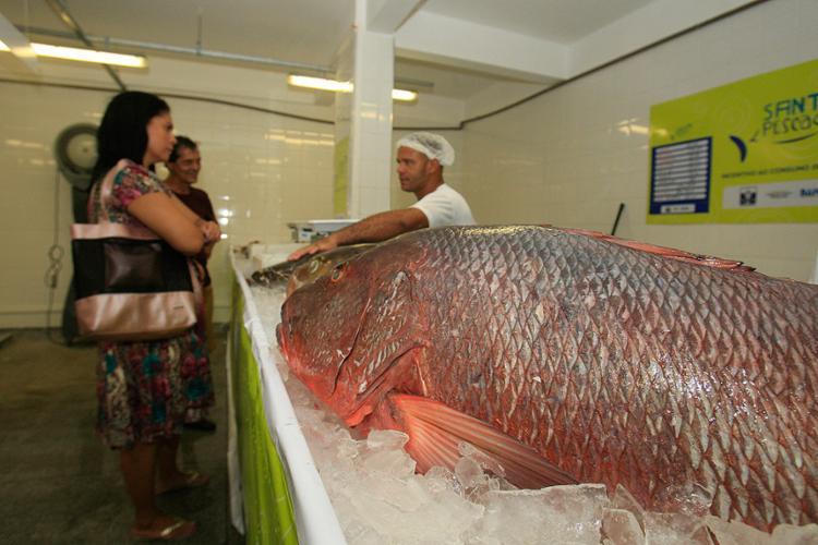 Peixe é um dos produtos mais procurados para o almoço - Foto: Alessandra Lori l Ag. A TARDE