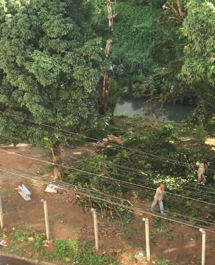 Moradores reclamaram do corte de árvores na região do Salvador Shopping - Foto: Cidadão Repórter | Via WhatsApp