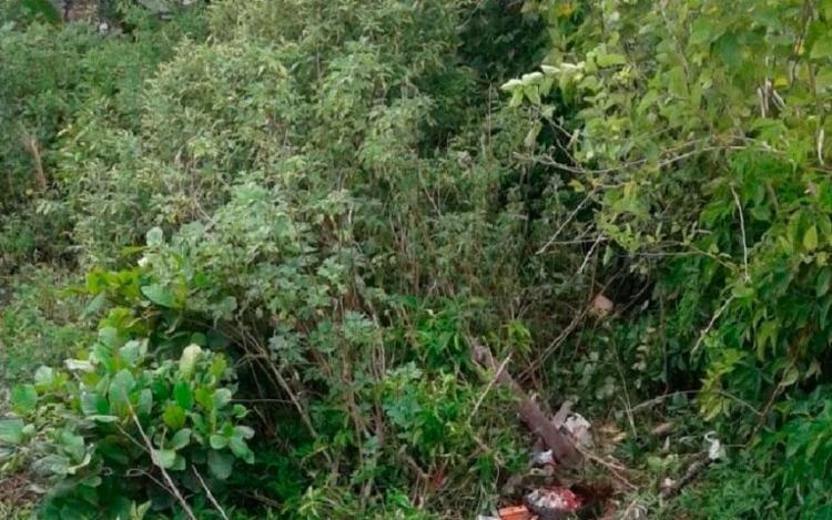 Corpo do homem foi encontrado em um matagal, porém sua cabeça não foi localizada - Foto: Reprodução | Site Radar 64