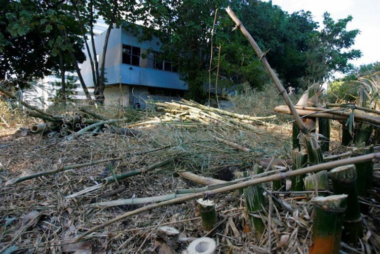 Vista de área onde será construída a biblioteca da Universidade Federal da Bahia - Foto: Joá Souza | Ag. A TARDE