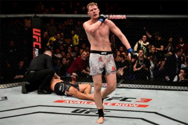 Werdum foi nocauteado por Volkov no 4º round - Foto: Reprodução l UFC