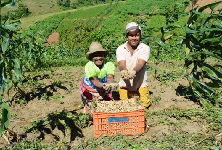 Agricultura Familiar do Sertão do São Francisco terá investimento de mais de R$ 900 mil