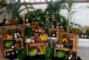 Estudantes de Nova Viçosa participam de projeto sobre Agricultura Familiar
