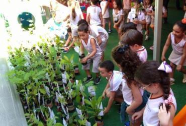 Estudantes de Barreiras recebem 300 mudas de árvores nativas do cerrado