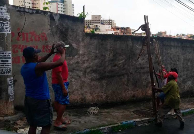 Moradores usaram escada para capturar o animal | Foto: Joyce de Sousa | Ag. A TARDE