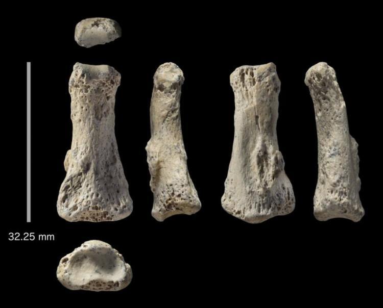 Osso de dedo humano com 90 mil anos foi encontrado em deserto na Arábia Saudita - Foto: Ian Cartwright