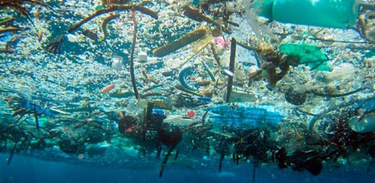 Cerca de 75% das 8,3 bilhões de toneladas de plástico produzidas pelo ser humano desde a invenção do plástico já viraram lixo - Foto: NOAA | Divulgação