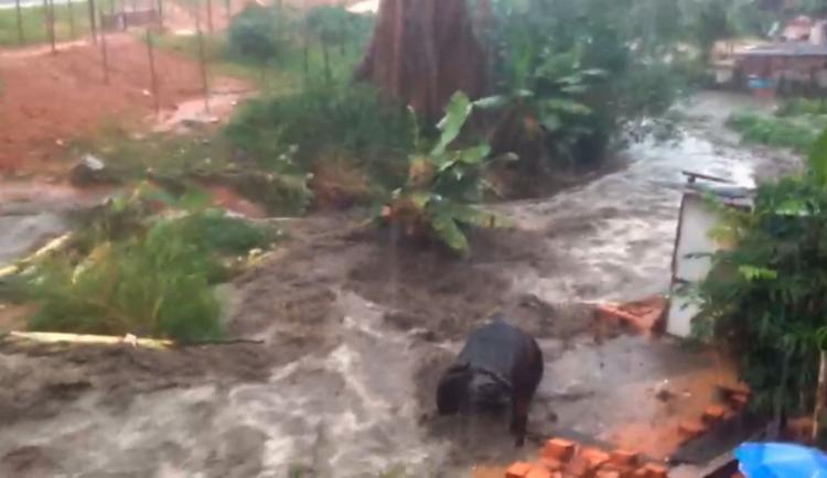 Córrego fica na avenida Mário Sérgio de Paiva - Foto: Reprodução