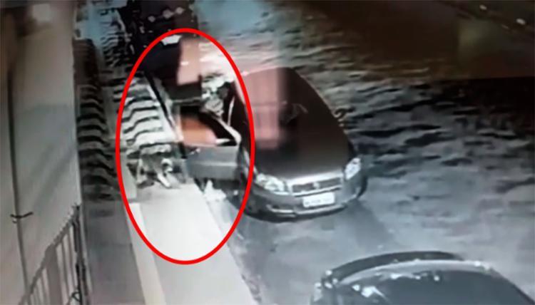 Homem puxou o cão bruscamente para o carro - Foto: Reprodução