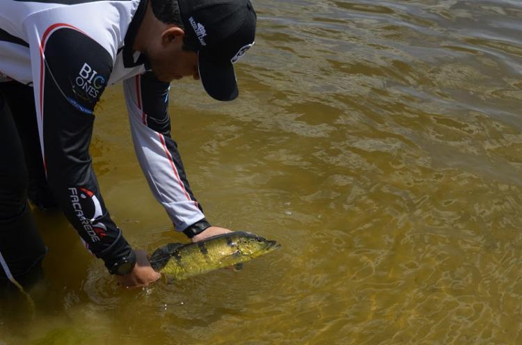 O II Torneio Cabras da Pesca prossegue até sábado (14) e conta com programação especial voltada à conscientização ambiental - Foto: Divulgação