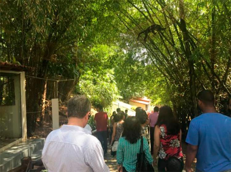 Zoo de Salvador tem atualmente mais de 1.600 animais - Foto: Divulgação   Inema