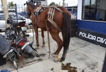 Cavalo e carroça com motos furtadas são apreendidos em Conquista | Reprodução | Blog do Anderson