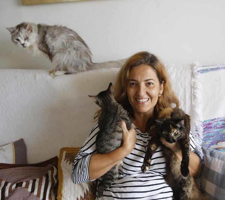 Suze Tavares tem quatro gatos para adoção em sua casa, além de outros cinco que já assumiu como dela. Foto: Margarida Neide / Ag. A Tarde