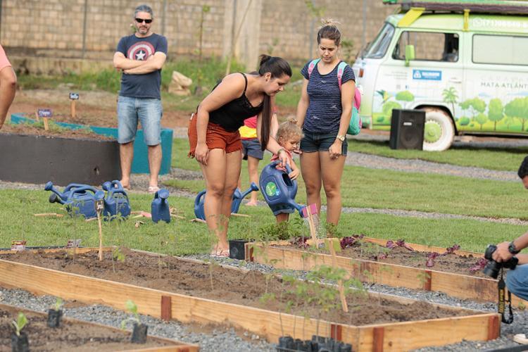 Terreno de 4.940 m² tem 24 leiras com frutas, verduras, legumes e hortaliças cultivados sem uso de agrotóxicos - Foto: Luciano da Matta l Ag. A TARDE