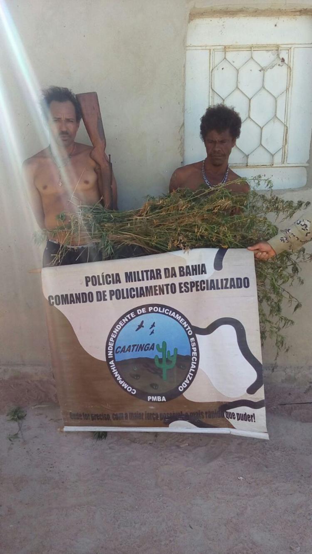 Homens possuíam plantação de maconha em fazenda - Foto: Divulgação | SSP